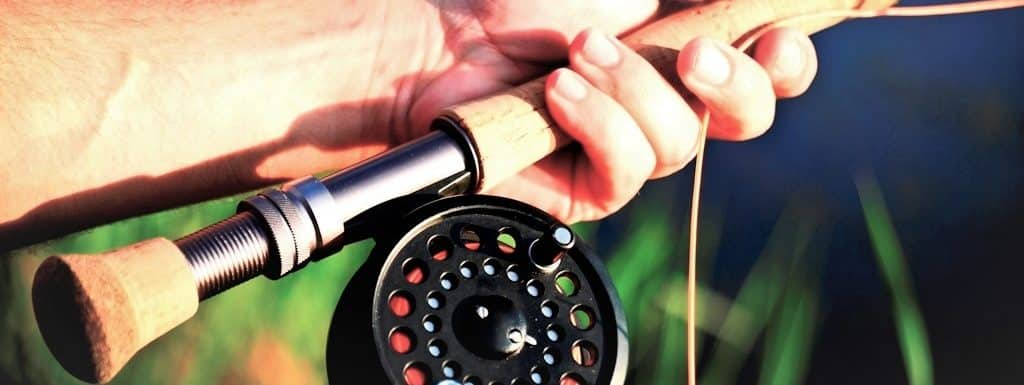 Best Fly Rod for Trout – Reviews & Buying Guide