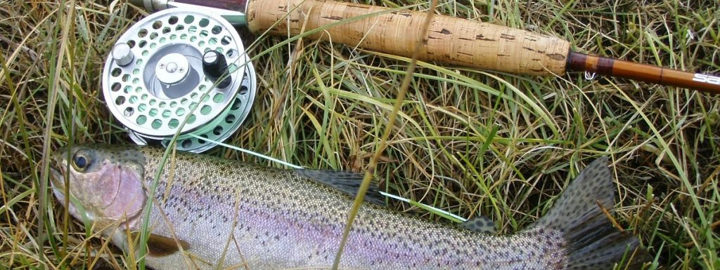Rainbow Trout Fly Fishing Tips (How to Fly Fish for Trout)